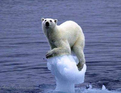 , Réchauffement Climatique en Images