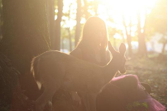 , Emmy Lee et Bambi : Une Belle Rencontre