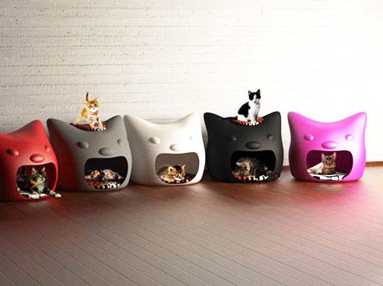 pin by amfe association maladies foie enfants on chat cats pint. Black Bedroom Furniture Sets. Home Design Ideas