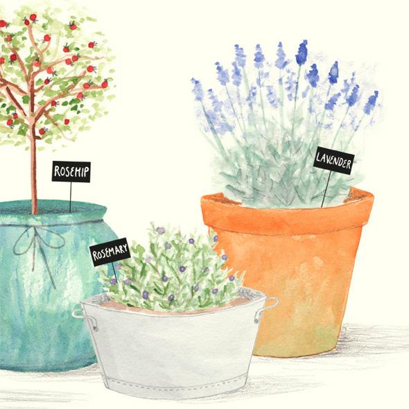 , Amy Borrell : Illustrations Naïves aux Couleurs Pastel