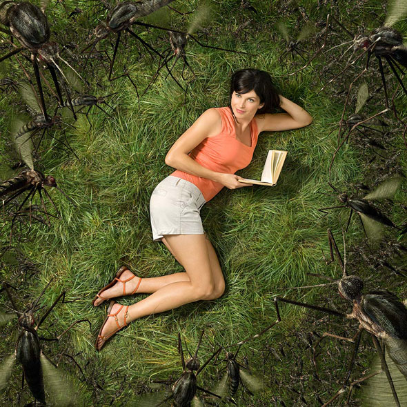 , Glen Wexler : Spectaculaires Manipulations Photographiques