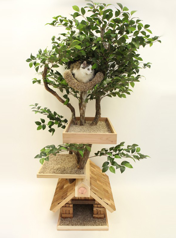 Pet Tree Houses Arbre Chat 1 Pet Tree Houses : Maisons Arbres en Bois pour Chats