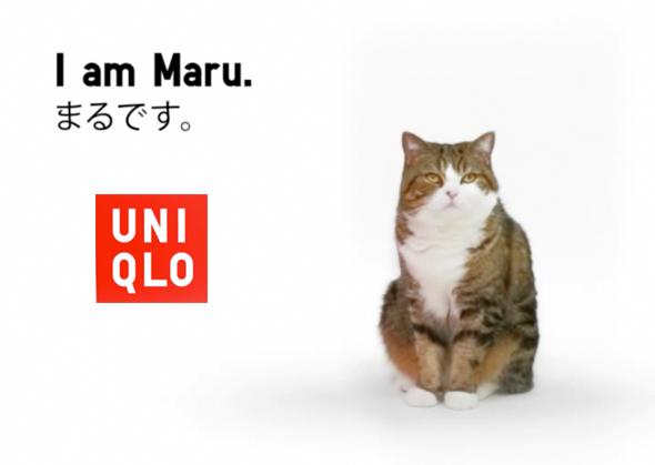 , Pub UNIQLO Lucky Cube avec Maru le Chat (video)