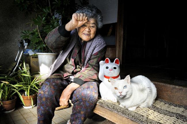 12 Chat Fukumaru et Misao la Grand Mere Fukumaru le Chat et Misao la Grand Mere des Amis pour la Vie