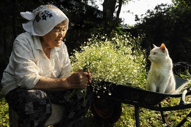 Fukumaru le Chat et Misao la Grand-Mere des Amis pour la Vie