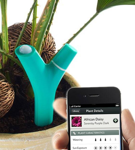 , Parrot Flower Power : Surveillez vos Plantes sur votre iPad et iPhone