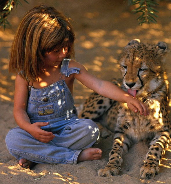 , Tippi My Book of Africa : La Petite Fille et Les Animaux Sauvages