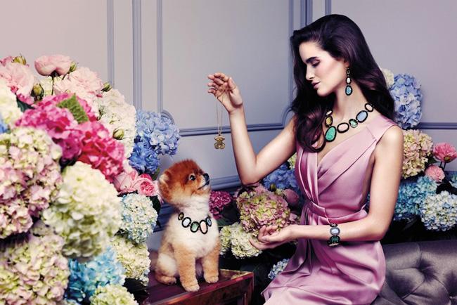 , Bijoux TOUS ete 2013 avec un Loulou de Pomeranie la Star de la Campagne