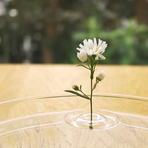 1 Ripple OODesign Vase Flottant Floating - Ripple, Petit Vase Flottant Transparent par OO Design