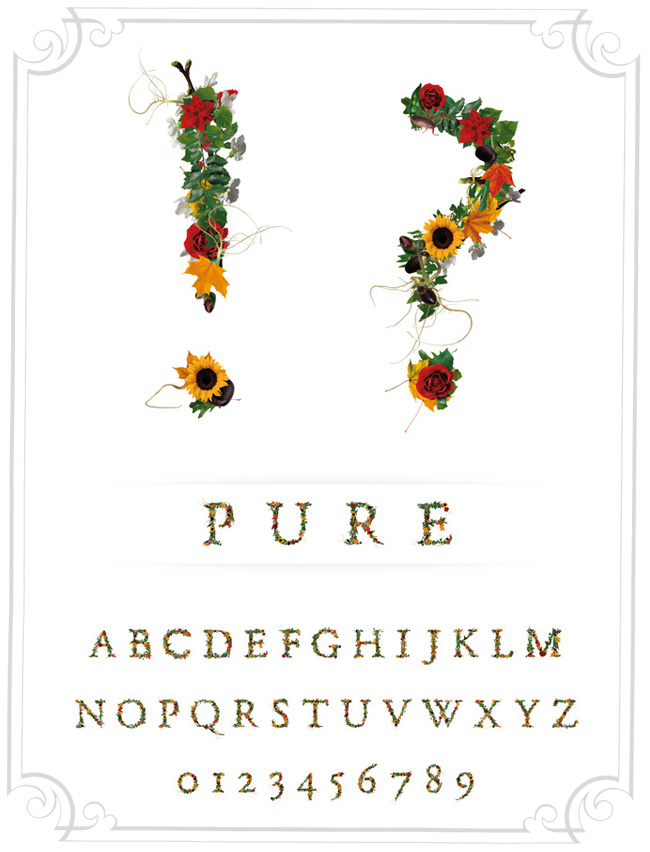 , Alphabet Typographique en Fleurs par Novo Typo