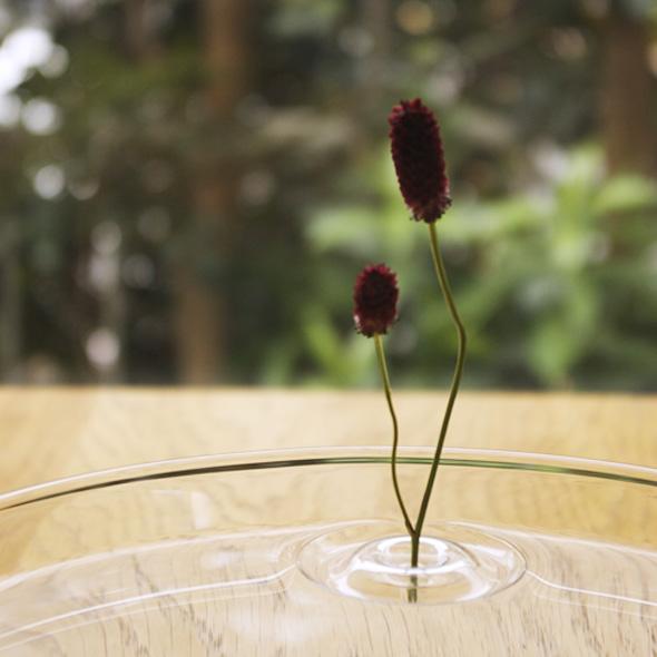 5 Ripple OODesign Vase Flottant Floating - Ripple, Petit Vase Flottant Transparent par OO Design