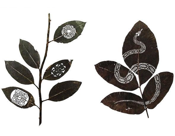 , Illustrations par Lorenzo Duran : L'Art de Découper des Feuilles Mortes