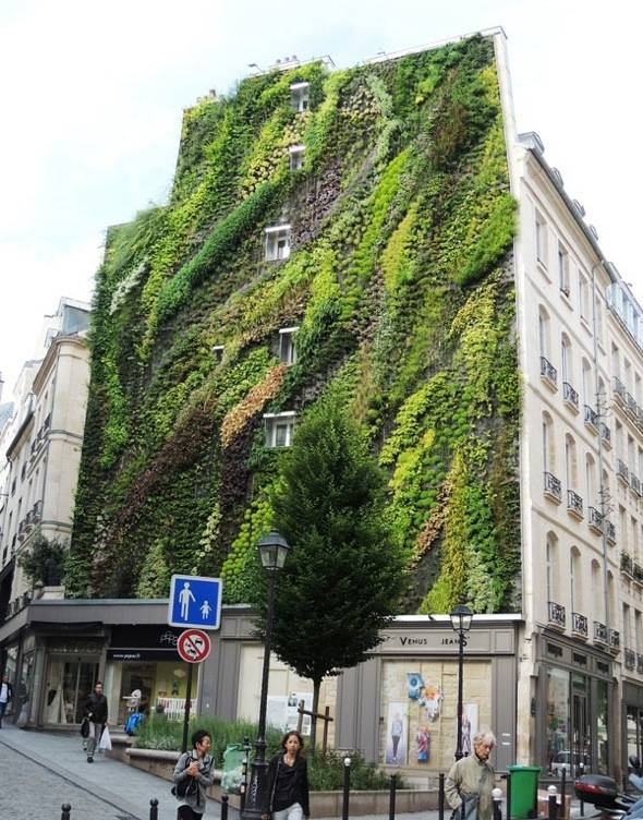 Mur-Vegetal-Patrick-Blanc-Aboukir-75002-Paris-00