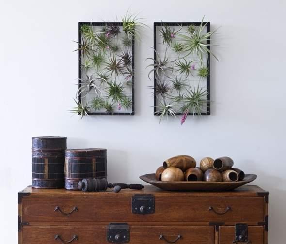 Airplantman-Frame-Mini-Jardins-Verticaux-Plantes-Vertes-03