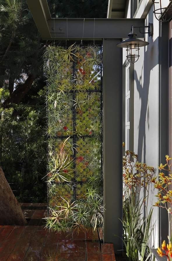 Airplantman-Frame-Mini-Jardins-Verticaux-Plantes-Vertes-08