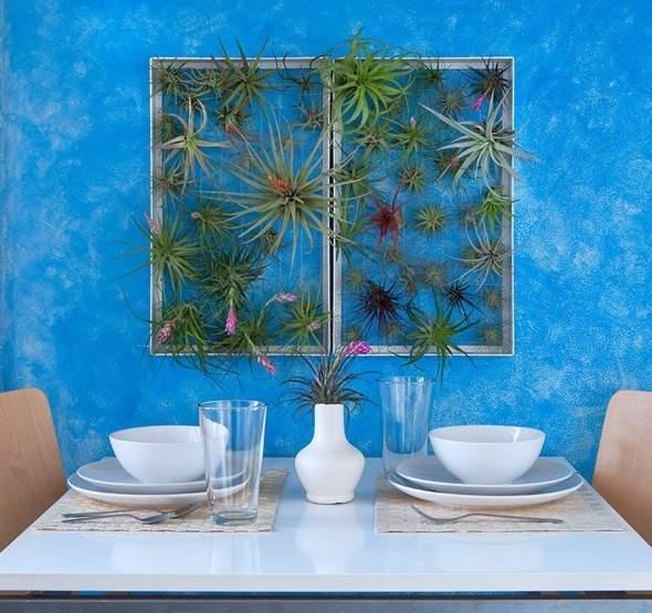 Airplantman-Frame-Mini-Jardins-Verticaux-Plantes-Vertes-10