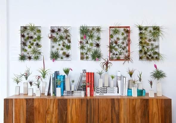 Airplantman-Frame-Mini-Jardins-Verticaux-Plantes-Vertes-11
