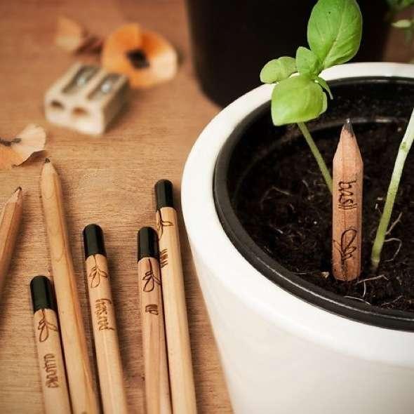 Sprout Crayon Papier Plante Graine Basilic Menthe 01 - Sprout, le Crayons à Papier à Planter avec ses Petites Graines