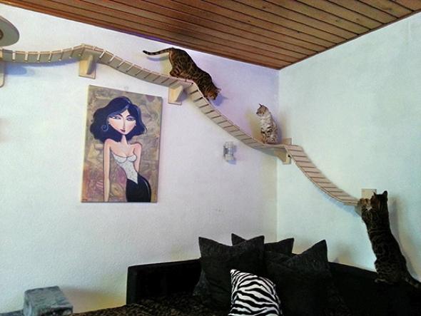 parcours mural pour chat fabriquer un parcours pour chats. Black Bedroom Furniture Sets. Home Design Ideas