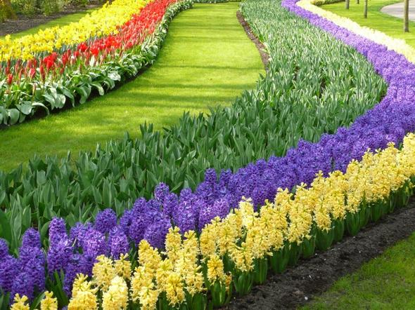 Keukenhof Pays-Bas : Le plus grand Jardin de Fleurs de Printemps au ...