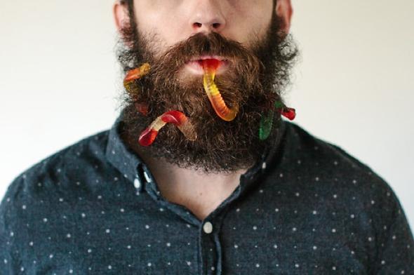 , Will It Beard par Pierce Thiot : Le Hipster qui Cache tout dans sa Barbe