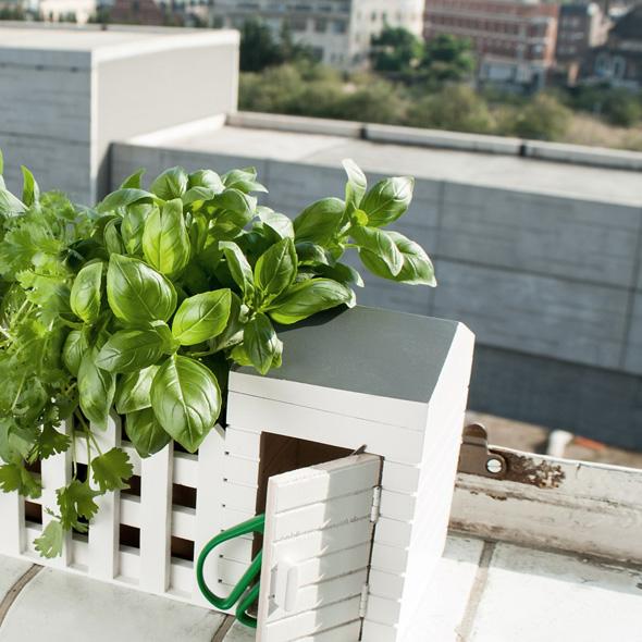 , Adorable Jardiniere d'Intérieur pour Herbes Aromatiques