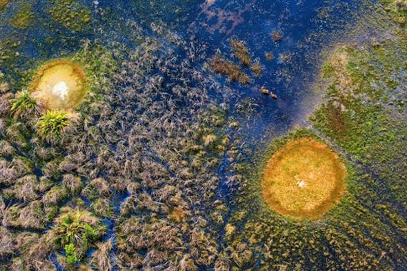 , Fascinants Animaux et Paysages d'Afrique Vus du Ciel par Michael Poliza