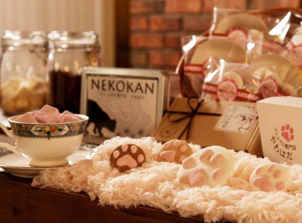 , Savoureux Chat Marshmallow à Plonger dans votre Café