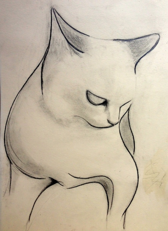 kellas-campbell-fusain-chats-dessin-00