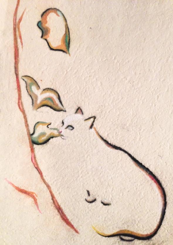 kellas-campbell-fusain-chats-dessin-03