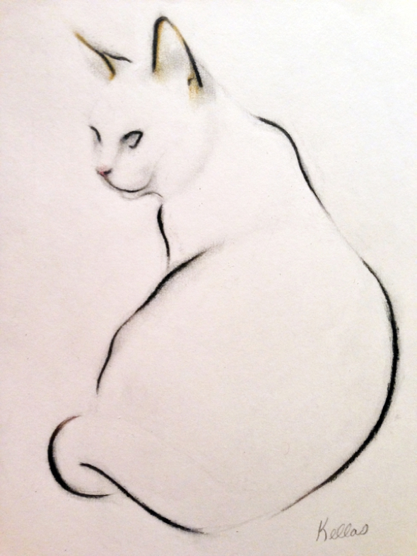 kellas-campbell-fusain-chats-dessin-06