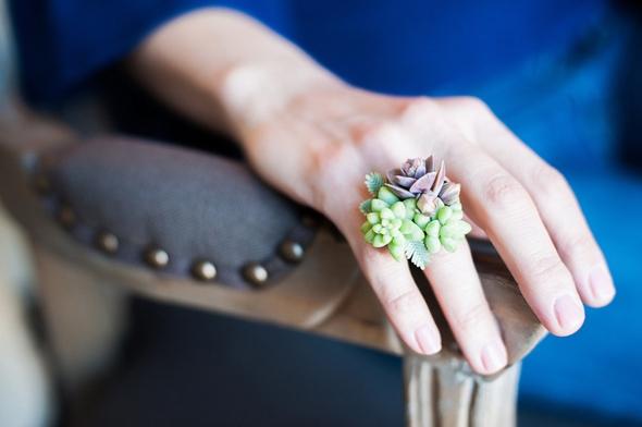passion-flower-susan-mcleary-bijoux-plantes-vertes-00