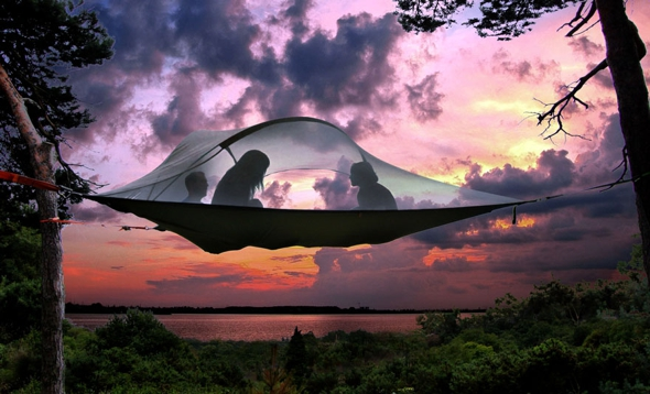 tente-suspendue-arbre-tentsile-alex-shirley-smith-00