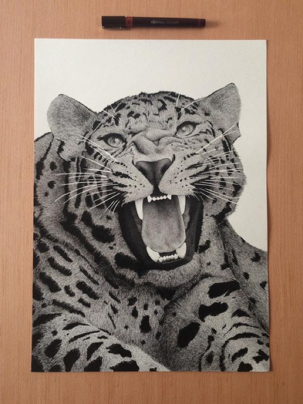 xavier-casalta-rotring-illustration-realiste-leopard-00