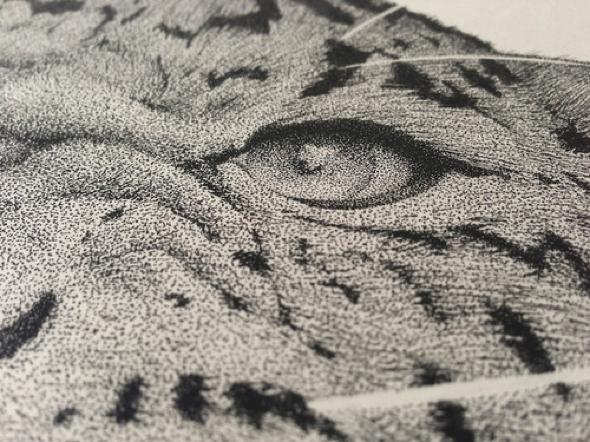 , Hyper Realiste Portrait de Leopard Dessiné au Stylo Rotring