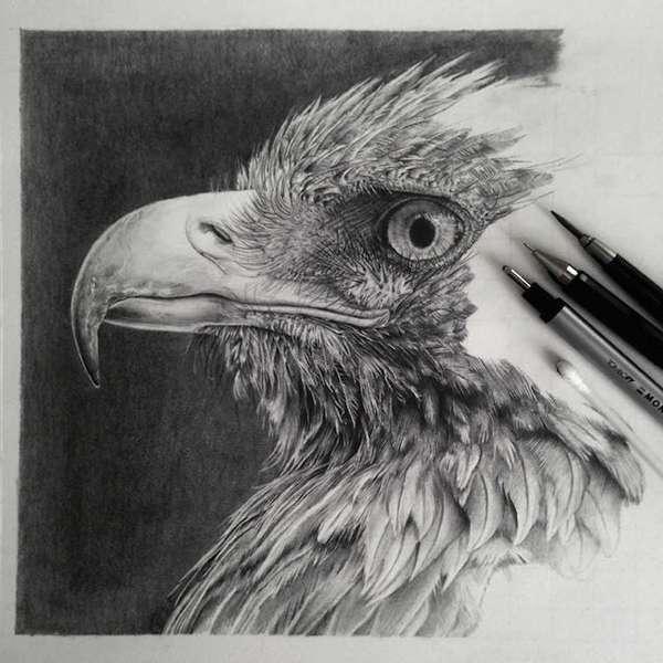 , Ces Etonnantes Photos sont des Dessins au Crayon à Mine Graphite