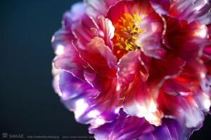 resine-fleurs-kanzashi-sakae-bijoux-00