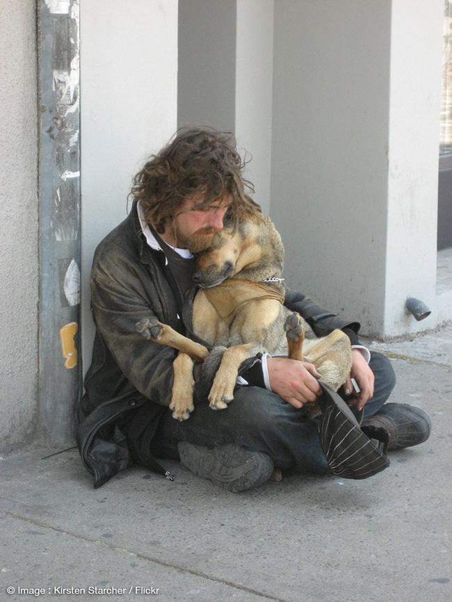 , Le Chien Reste le Meilleur Ami de l'Homme et du Sans-Abri