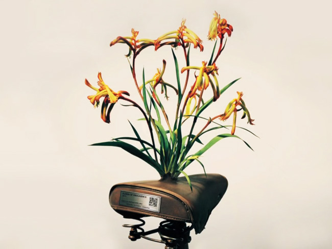 cogoo fleurs velos abandonnes saddle blossoms 1 - A Tokyo, les Fleurs Partent à la Rescousse des Vélos Abandonnés