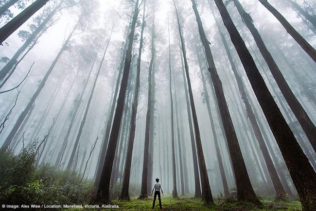 petit homme impressionante nature photo 2 - La Petitesse de l'Homme face à l'Immensité de la Nature en 25 Photos