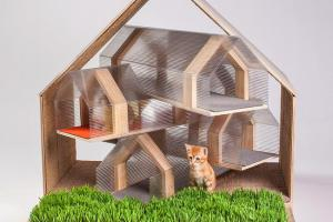 architects-animals-fixnation-chat-animaux-maison-architecture-12