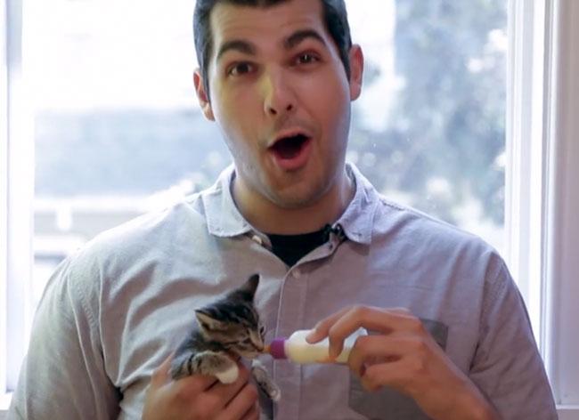 , Ces Hommes détestaient les Chats jusqu'à ce qu'Ils les Prennent dans les Bras (Vidéo)