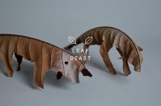, Ces Créatures Sculptées sont des Feuilles Mortes de Magnolia