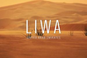 street-view-google-desert-liwa-arabie-oasis-0