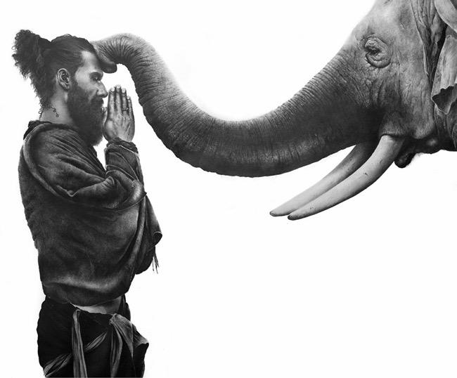 david filer dessin crayon afrique animaux sauvages 10 - Avec ses Crayons, David Filer Illustre avec Réalisme la Vie Sauvage en Afrique