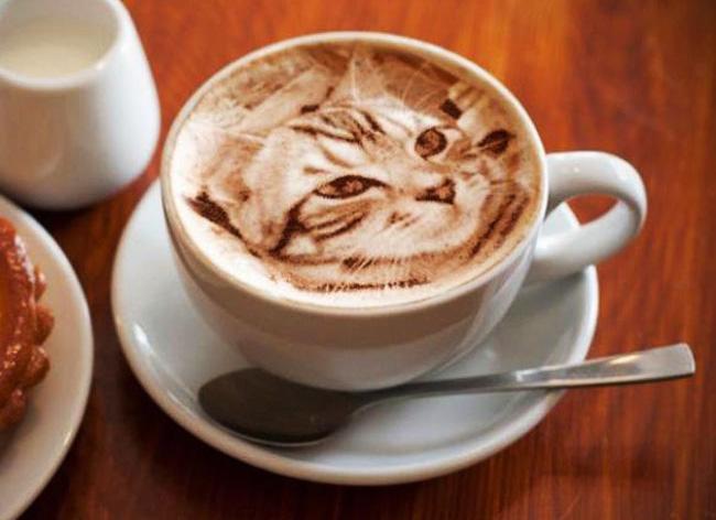 latte art chats, Elle Dessine des Chats Hyper Realistes dans son Café