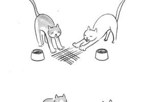 tango-illustration-humour-dessin-caricatures-1