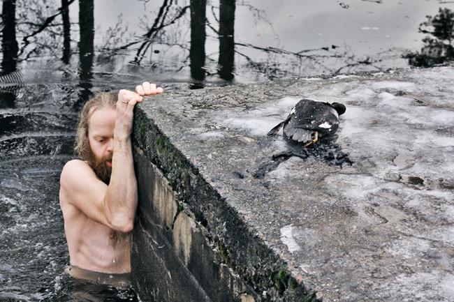 , Ce Heros Sauve un Canard de la Noyade dans une Eau Glacée