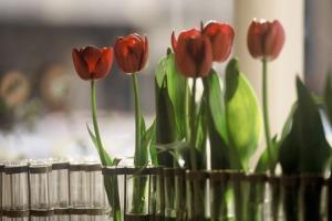 vase-avril-soliflores-zinc-tse-tse-5