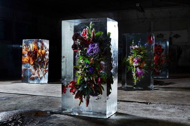 makoto azuma fleurs glace art 0 - Bouquets de Fleurs Exotiques dans des Ecrins de Glace